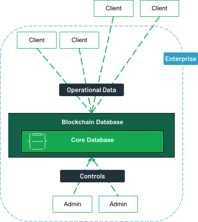 Clients, both internal and external can access the blockchain database for operational data. The administrators inside the enterprise control the database.